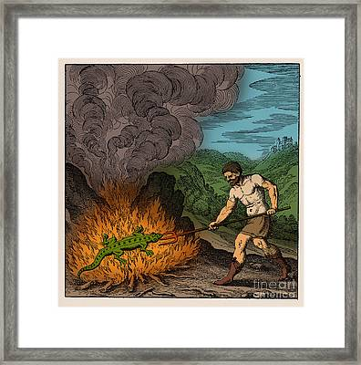 Alchemist Roasting Salamander Framed Print by Science Source