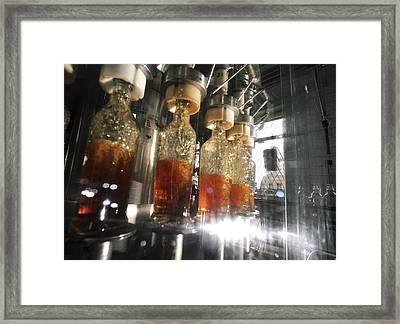 Alcoholic Drinks Production, Russia Framed Print by Ria Novosti