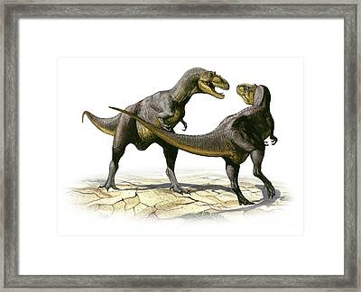 Alectrosaurus Olseni, A Prehistoric Framed Print by Sergey Krasovskiy