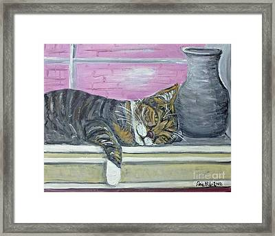 Alex On Windowsill  Framed Print