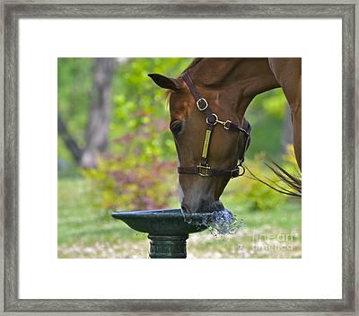 Water Break Framed Print
