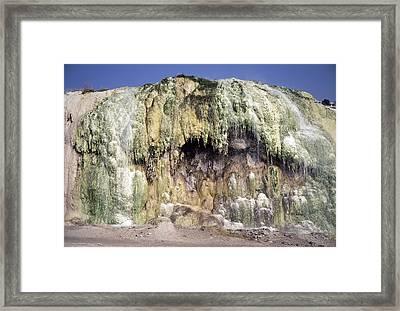 Algae On Travertine Framed Print by Dirk Wiersma