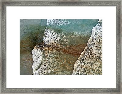 Algal Bloom Framed Print by Peter Chadwick