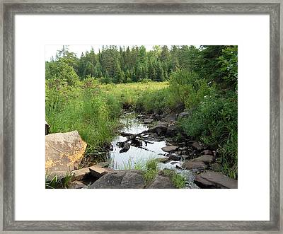 Algonquin Odes Five Framed Print by Alan Rutherford