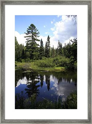 Algonquin Odes Two Framed Print by Alan Rutherford