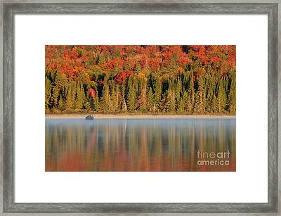 Algonquin Reflections Framed Print by Chris Hill