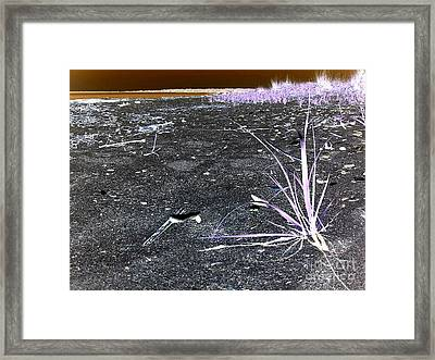 Alien Grass Framed Print by Silvie Kendall