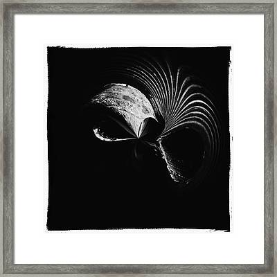 Alien Mask Framed Print by Skip Nall