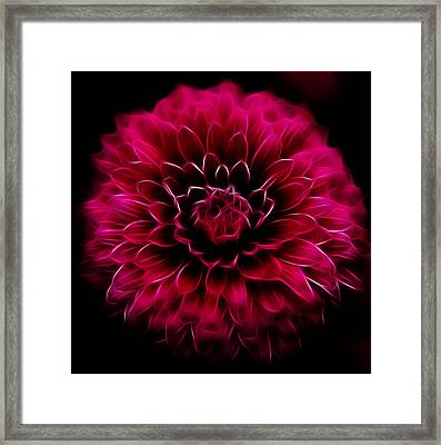 Framed Print featuring the photograph Alive by Joetta West