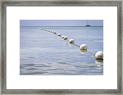 All Blue Framed Print by Nacho Miyashiro
