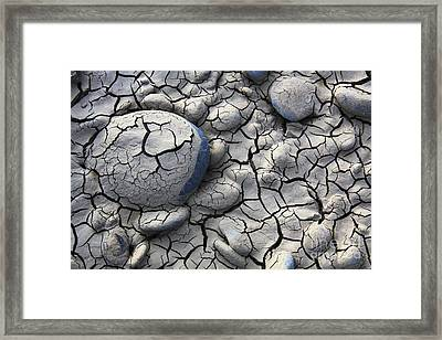 All Dried Out Framed Print