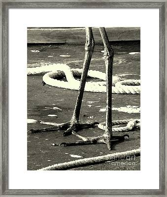 All Feet On Deck Framed Print