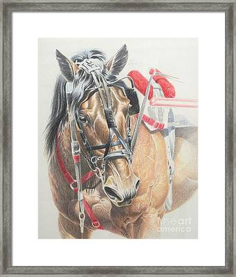 All Heart Framed Print by Carrie L Lewis