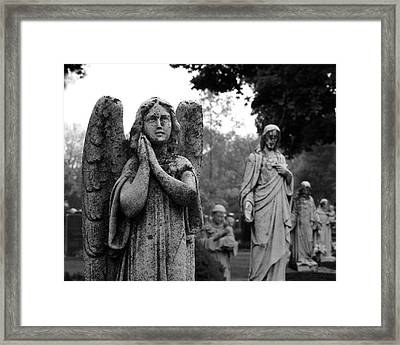 All In A Row Framed Print by Darren Creighton