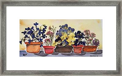 All In A Row Framed Print by Regina Ammerman