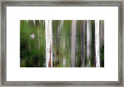All Is Not What It Seems Framed Print