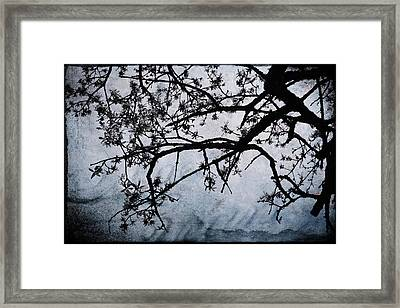 All My Love To Give Framed Print by Laurie Search