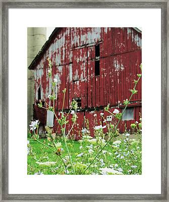 All That Is Good Framed Print by Todd Sherlock