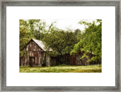 All That's Left Framed Print by Tamera James