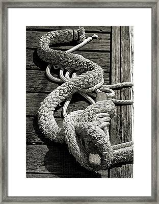 Framed Print featuring the photograph All Tied Up by Bob Wall