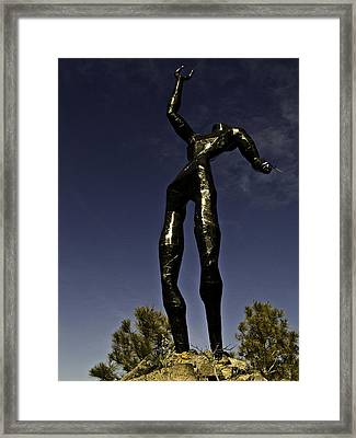Framed Print featuring the photograph All Wounded Warriors  by Larry Depee