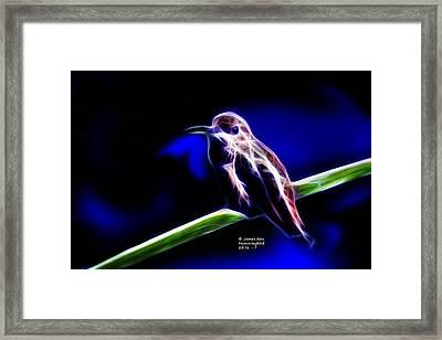 Allens Hummingbird - Fractal Framed Print by James Ahn
