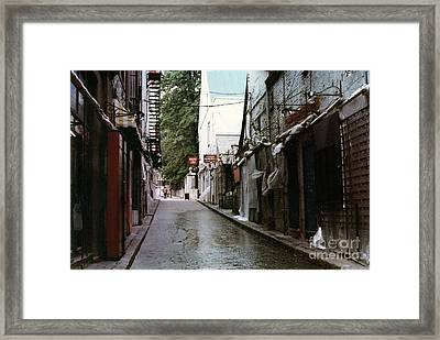 Alley In Old Quebec Framed Print by Cedric Hampton