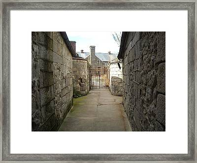 Framed Print featuring the photograph Alley Of The Caretakers by Christophe Ennis