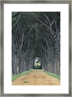 Alley . Provence Framed Print