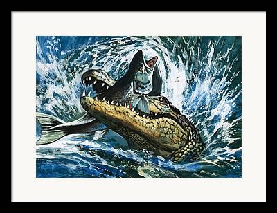 Alligator Framed Prints