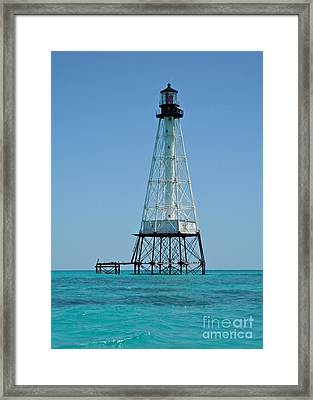 Alligator Lighthouse Framed Print