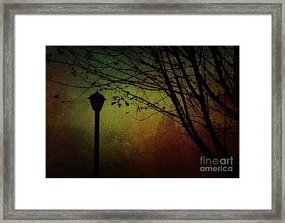 Almost Dark Framed Print by Billie-Jo Miller