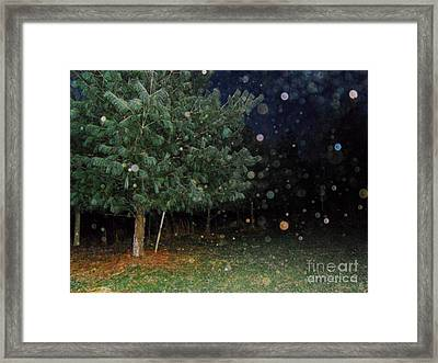 Almost Like Christmas Framed Print by Doug Kean