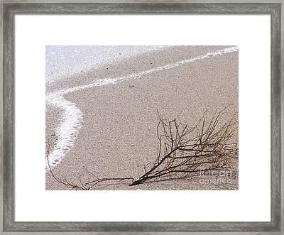 Alone - Ile De La Reunion Framed Print by Francoise Leandre