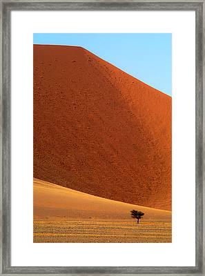 Alone Framed Print by Alistair Lyne