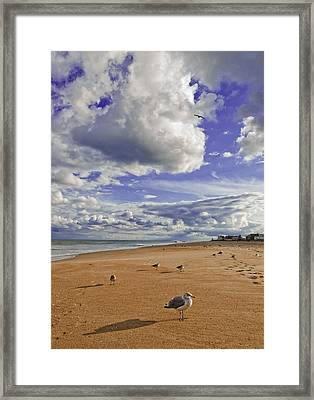 Framed Print featuring the photograph Alone At Last by Jim Moore