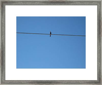 Alone At Last Framed Print by Kume Bryant