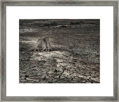 Alone Framed Print by Brenda Bryant