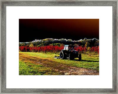 Alone Framed Print by Cindy Roesinger