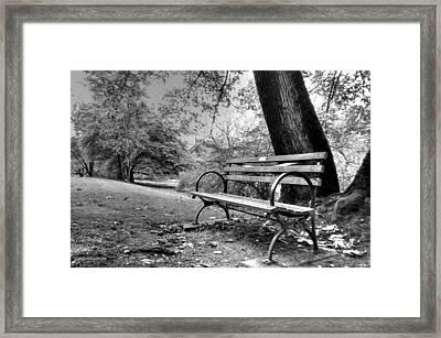 Alone In The Park Framed Print by Sarai Rachel