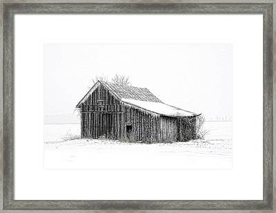 Framed Print featuring the photograph Alone In The Snow by Mary Timman