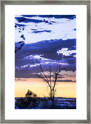 Framed Print featuring the photograph Alone by Marta Cavazos-Hernandez