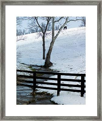 Alone On A Hill Framed Print by Paul Roger Ballard