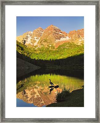 Alone On A Rock Framed Print