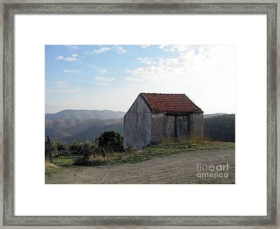Framed Print featuring the photograph Alone On The Hill by Arlene Carmel