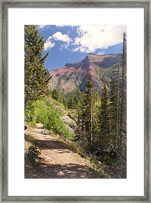 Along St. Mary's Lake Trail Framed Print by Marty Koch