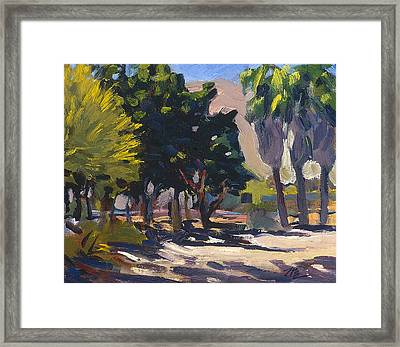 Along Th Amtrack Framed Print