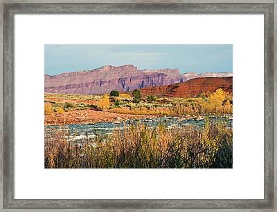 Framed Print featuring the photograph Along The Colorado River by Geraldine Alexander