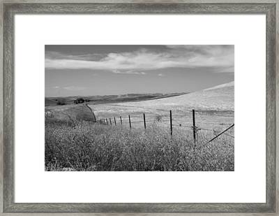 Framed Print featuring the photograph Along The Line by Kathleen Grace