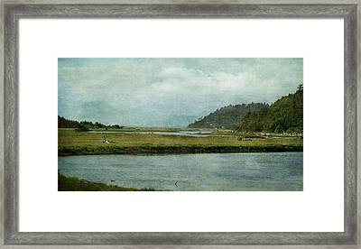 Along The Road Framed Print by Terrie Taylor